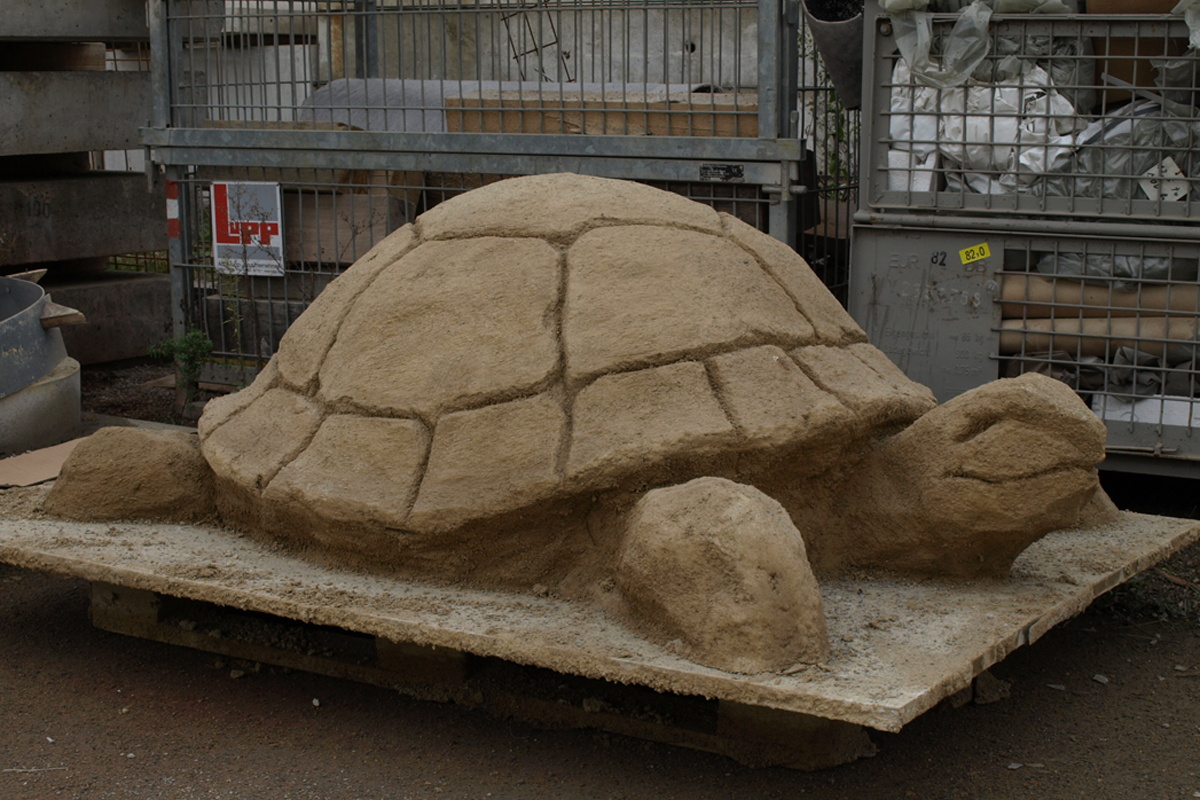 Schildkröte um 2007