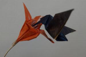 KleinobjektKolibri